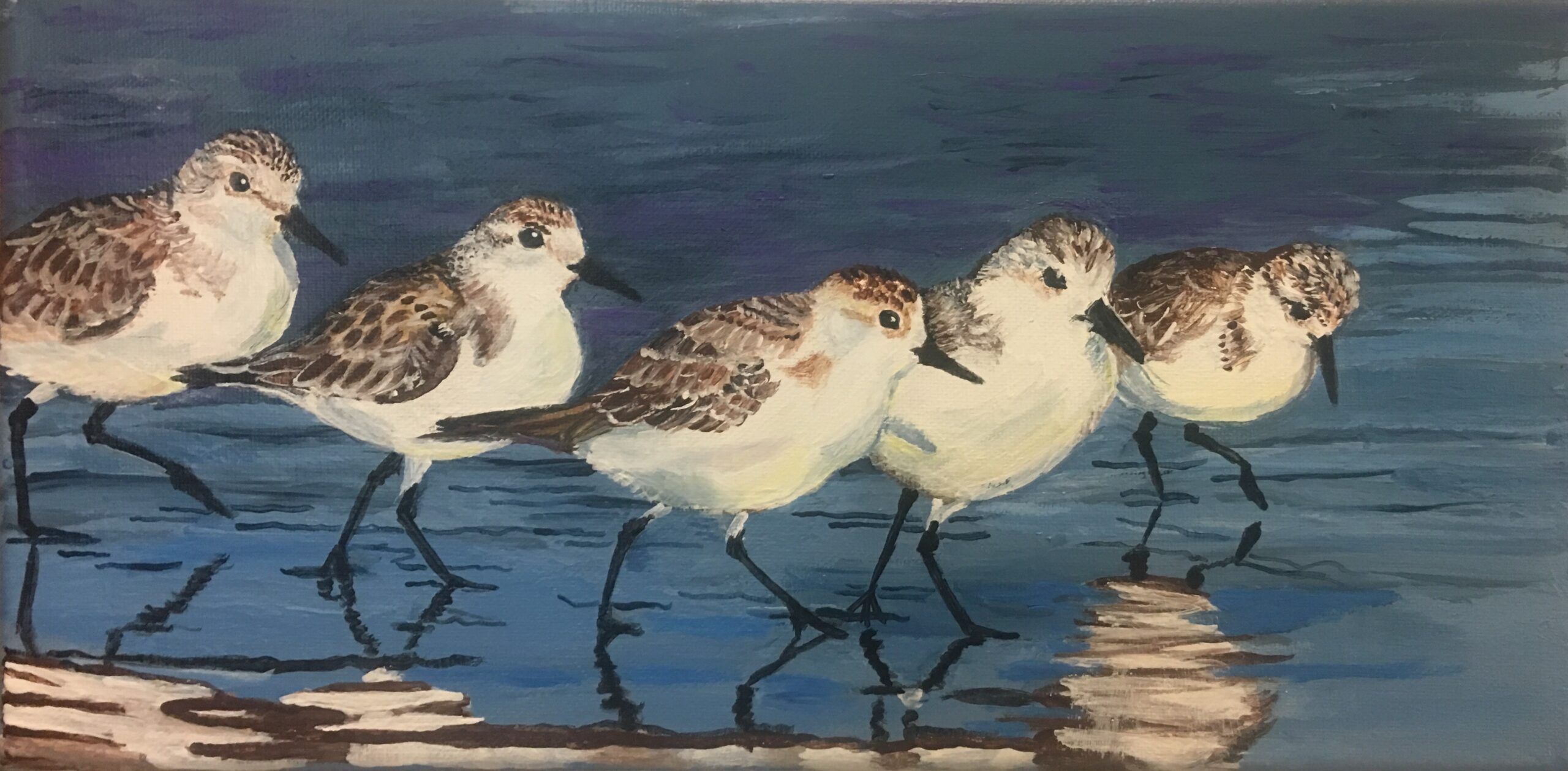 Plovers by Cindy Cormier
